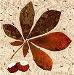 Chestnut Applique Leaf