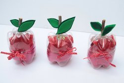 Plastic Bottle Apple Gift