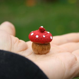 Enchanted Acorn Toadstools