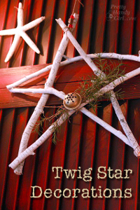 Tree Branch Star Decorations