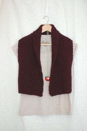 Easy Knit Vest Allfreeknitting