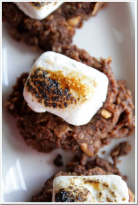 10 Minute No Bake S'mores Cookies