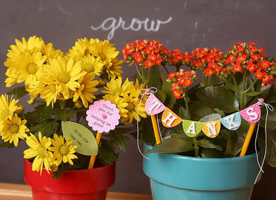 Teacher Flower Gifts