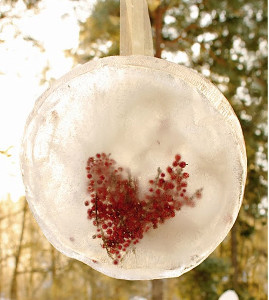 Berry Romantic Ice Decorations