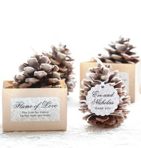 Pretty Pinecone Homemade Fire Starters