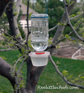 homemade bird feeders hummingbird feeder allfreekidscrafts 12902