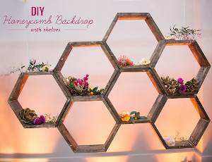 Sweet as Honey Geometric Backdrop
