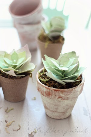 Perfect Paper Succulents