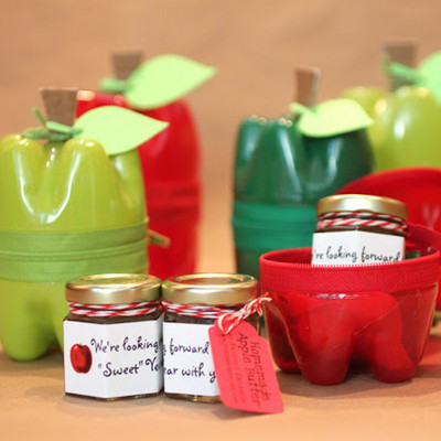 Upcycled Plastic Bottle Apple Containers IMR
