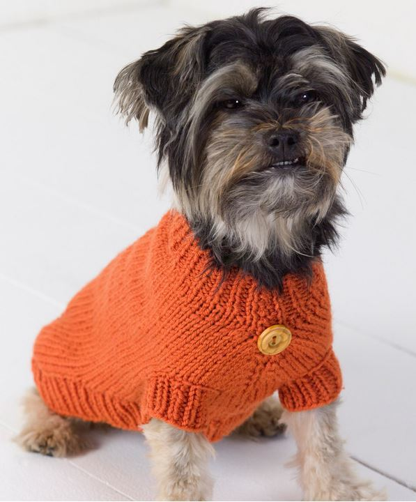 Life is Ruff Knit Dog Sweater | AllFreeKnitting.com