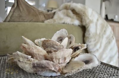 Nautical Oyster Shell Candle Holder