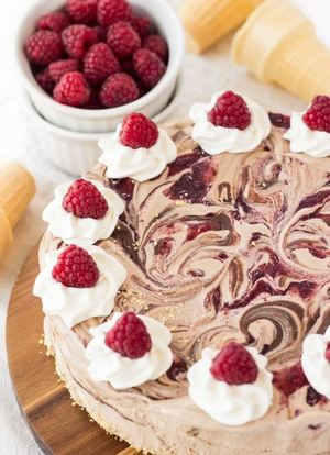 Nutella and Raspberry Swirl Ice Cream Cake