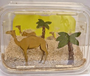 Desert In A Box: Biome Diorama
