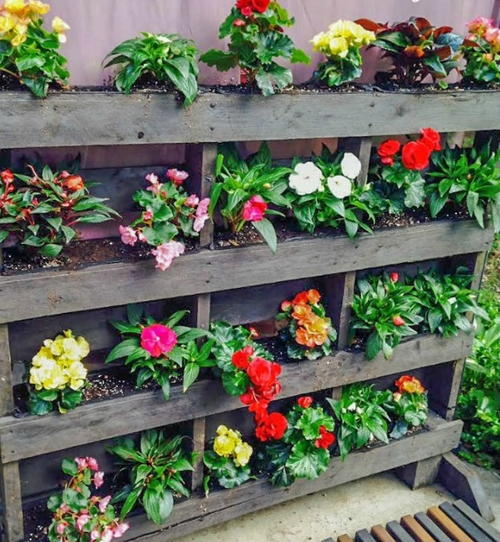 Vertical pallet garden step by step for Macetero vertical pallet