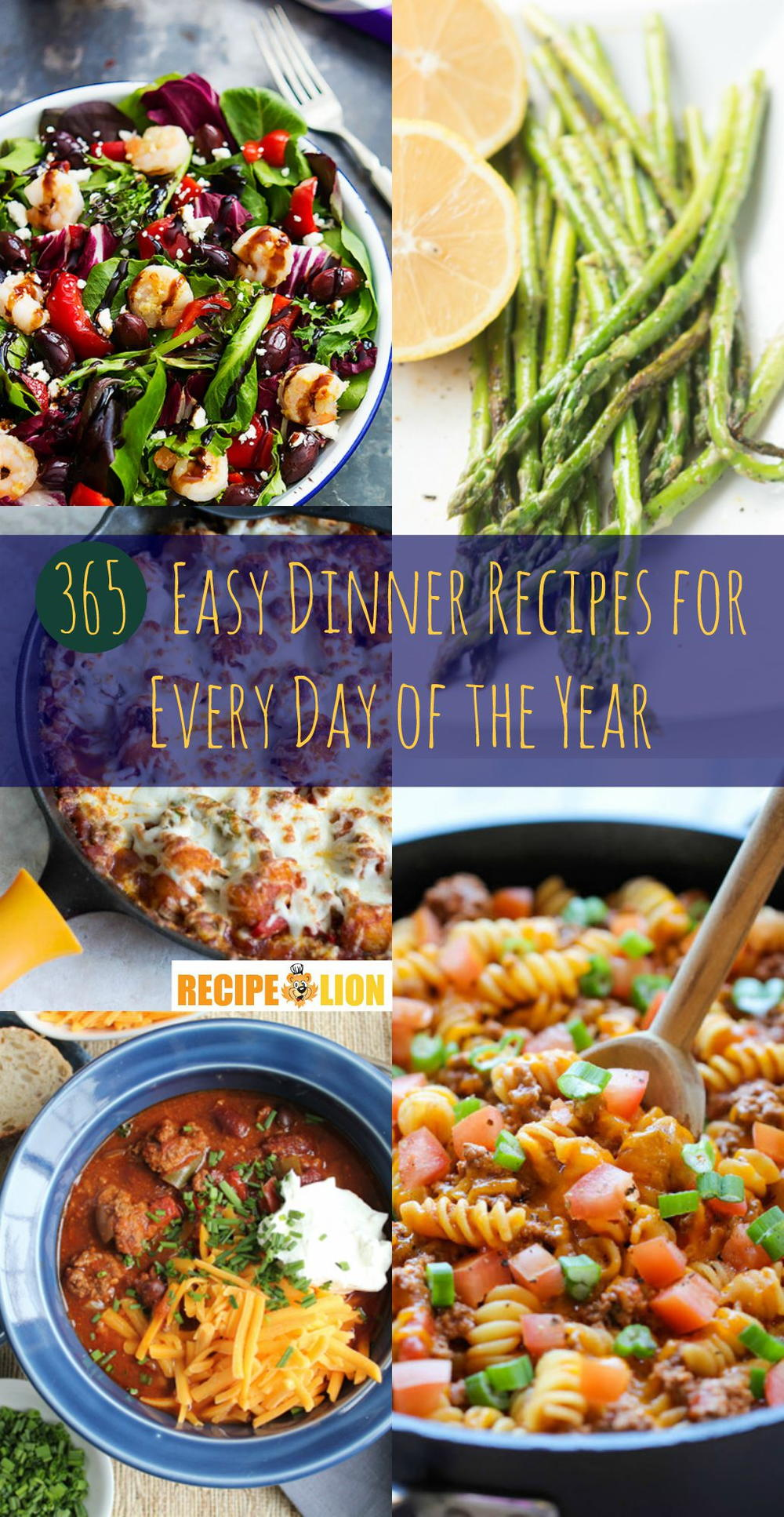365 easy dinner recipes for every day of the year recipelion forumfinder Gallery