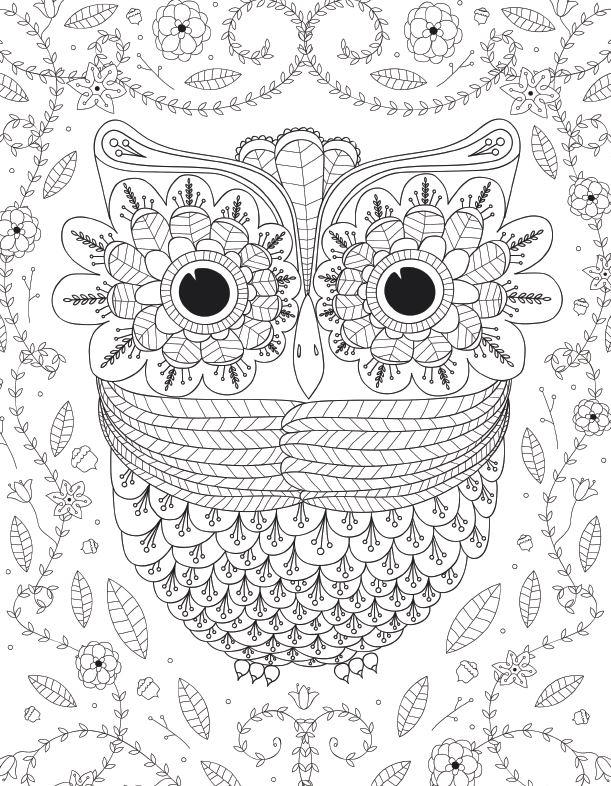 Advanced Coloring Pages Owls : Big eyed owl adult coloring page favecrafts
