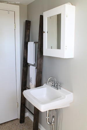 DIY Rustic Ladder Shelf