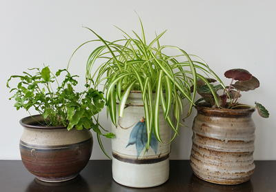 Upcycled Ceramic Plant Pots