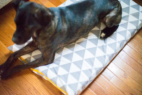 Dog Bed Diy Pillow