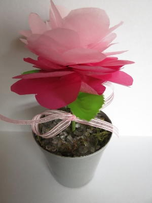 Pretty in Pink Tissue Paper Flowers
