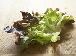Red Lettuce with Honey-Maple Vinaigrette