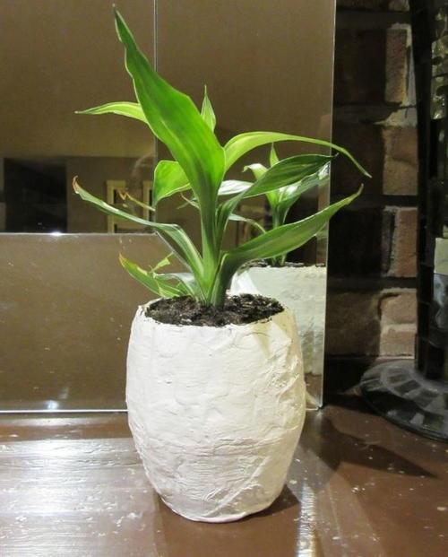 Papier mache pot for plants allfreepapercrafts papier mache pot for plants mightylinksfo