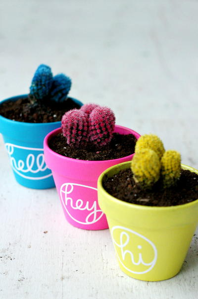 Colorful Cactus DIY Painting Project