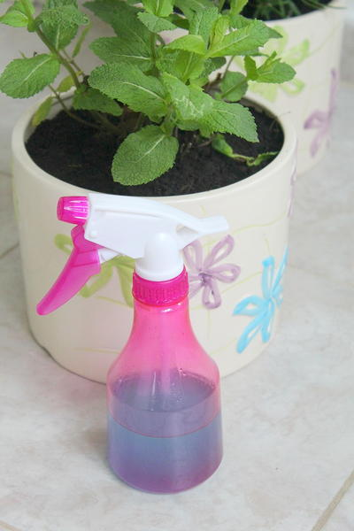 DIY Natural Window Cleaner