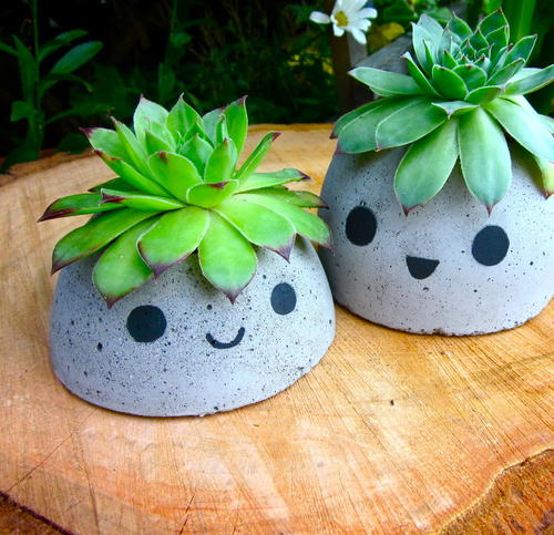 Cute DIY Concrete Planters