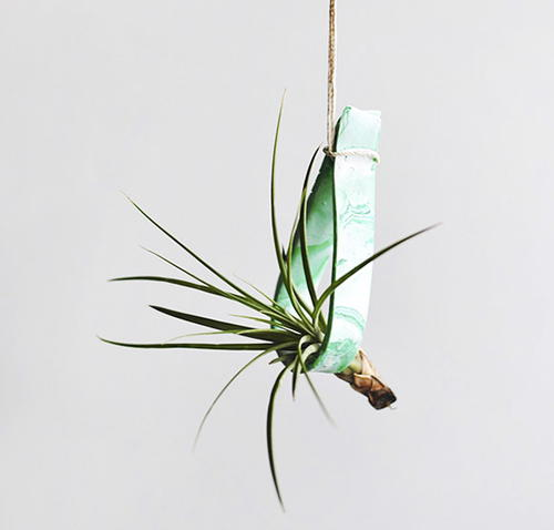 Clay Air Plant Holder