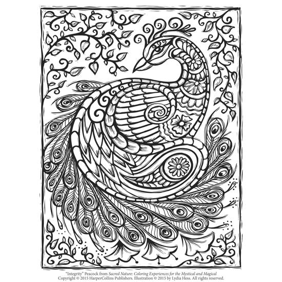 Peacock adult coloring page for Peacock crafts for adults