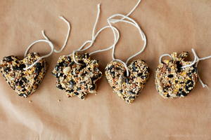 3-Ingredient DIY Bird Feeders