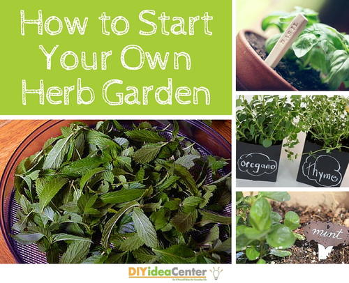 how to start your own herb garden diyideacentercom - How To Start An Herb Garden