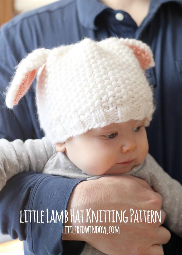 Little Lamb Baby Hat Allfreeknitting