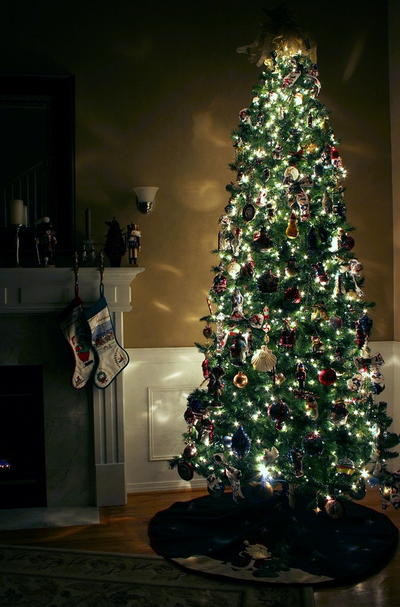 How to Keep a Christmas Tree Alive During the Holiday Season