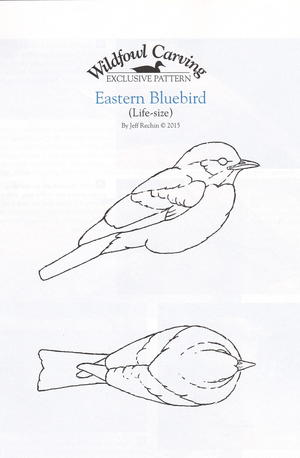 bluebird pattern