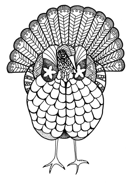 Colorful Turkey Adult Coloring Page