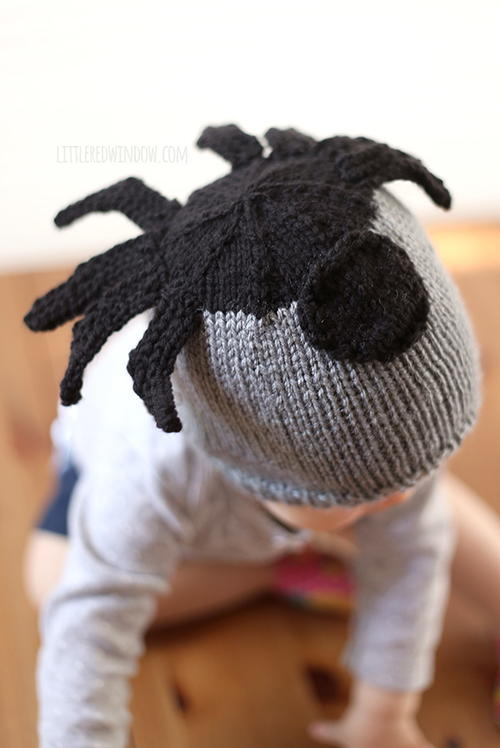 Silly Spider Knit Hat
