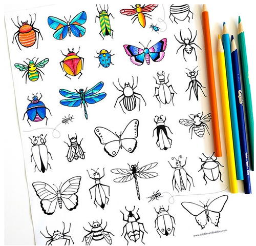 Butterflies And Bugs Coloring Page