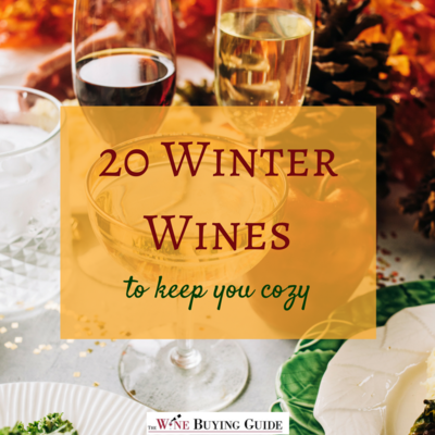 20 Winter Wines to Keep You Cozy