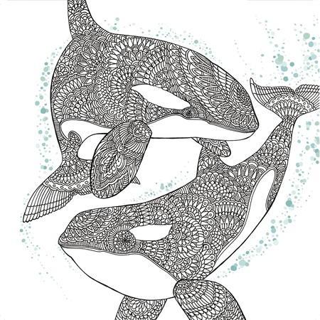 Orca Whale Coloring Page Favecrafts Com