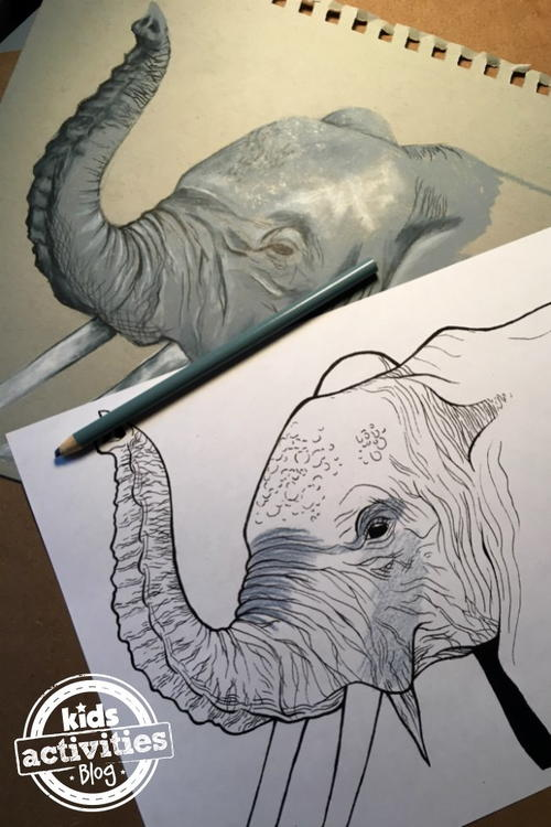 Elephant Coloring Page FaveCrafts