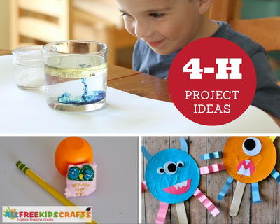 4h projects ideas