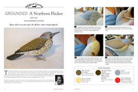 Grounded: A Northern Flicker Part Two