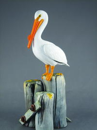 American White Pelican, Part Two: Painting and Habitat
