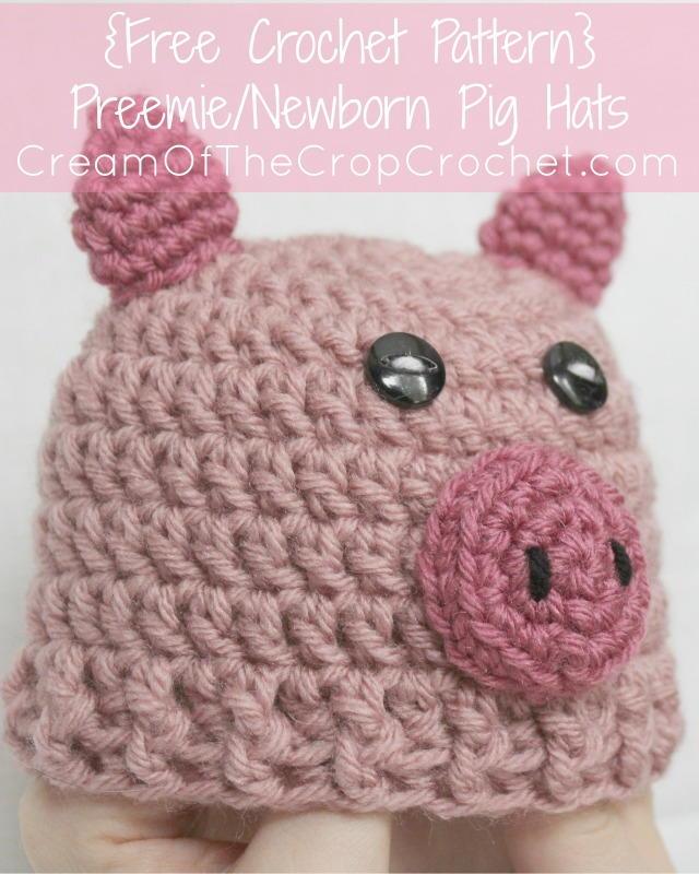 Preemienewborn Pig Hat Allfreecrochet
