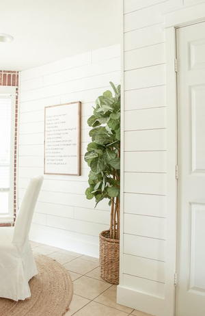 Affordable How to Shiplap Tutorial