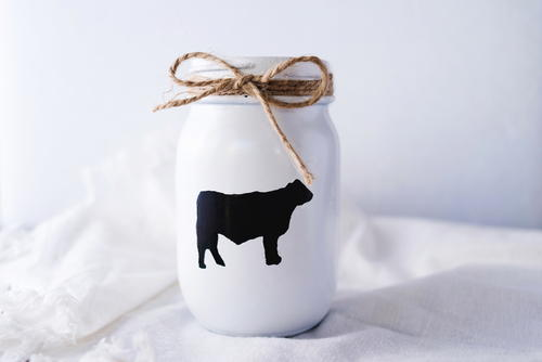Decorative Farmhouse Mason Jar