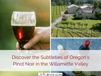 Discover the Subtleties of Oregon's Pinot Noir in the Willamette Valley