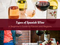 Types of Spanish Wine: A Beginner's Guide to Flavors and Regions